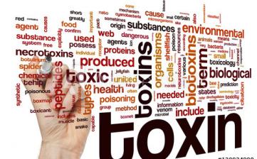 O detoksykacji